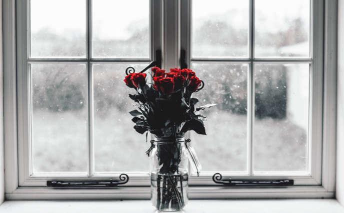 Enfatizar ventana con flores rojas